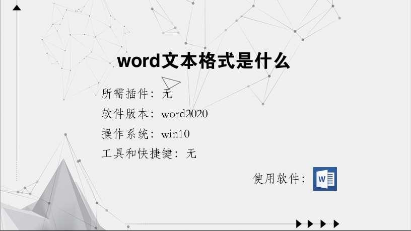 word文本格式是什么