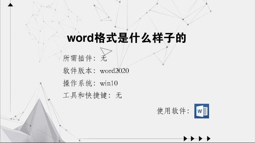 word格式是什么样子的
