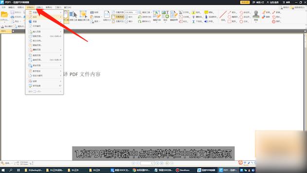 如何设置PDF全屏动画