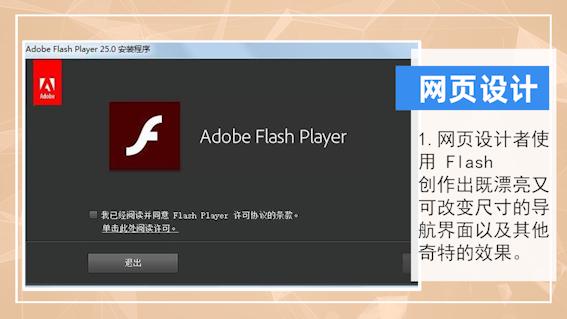 flash是什么意思