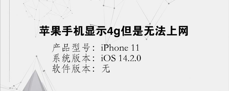 苹果手机显示4g但是无法上网