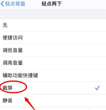 苹果12截图怎么设置第5步