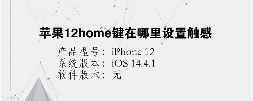 手机知识:苹果12home键在哪里设置触感